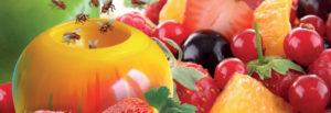 Борьба с дрозофилами ( плодовой или фруктовой мушкой )